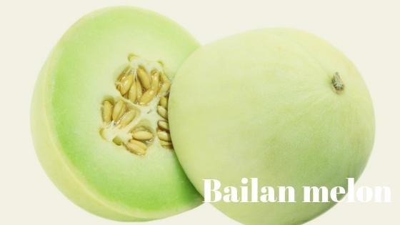 Bailan melon varieties