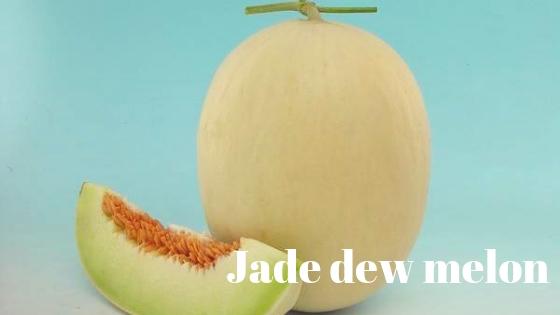 Jade dew melon varieties