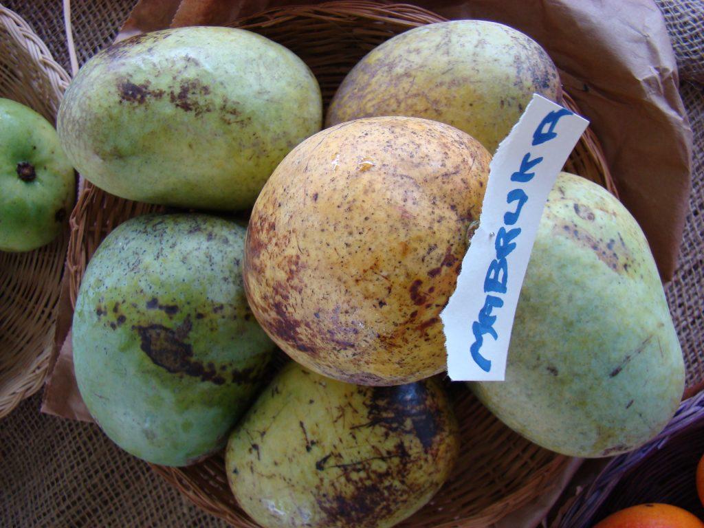 Mabruka mango