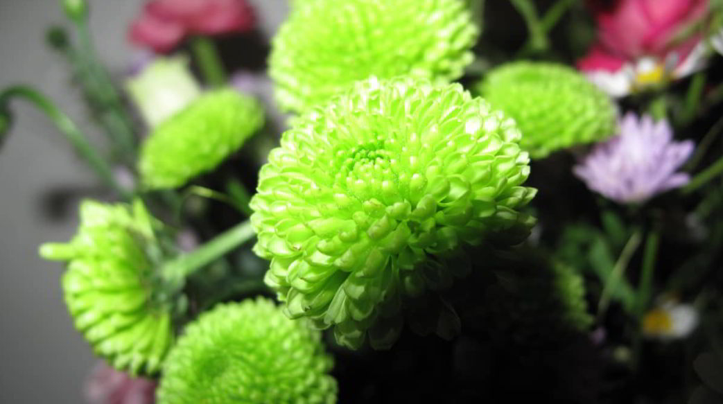 Best green flowers